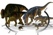 Гипакрозавр 27.jpg