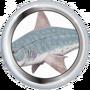 Спиральная акула