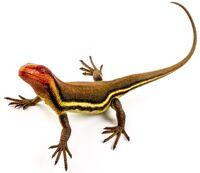 Hylonomus lyelli - MUSE