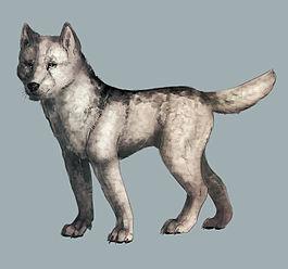 Ньюфаулендский волк