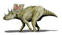Agujaceratops BW.jpg