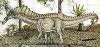 Amargasaurus 01