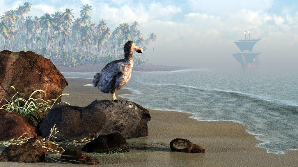 Маврикийский дронт