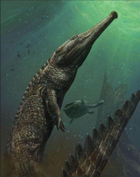 Махимозавр