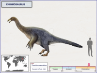 Enigmosaurus