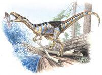 Masiakasaurus-640x469 30ac
