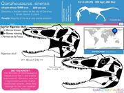 Qianzhousaurus size 02.jpg