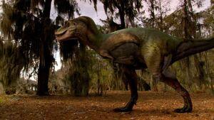 Альбертозавр4