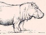 Гигантский бегемот