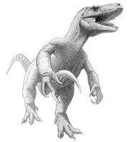 220px-Megaraptor namunhuaiquii jmallon