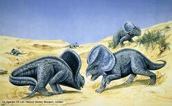 Protoceratops 1 65ba