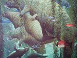 Морская корова Куэста