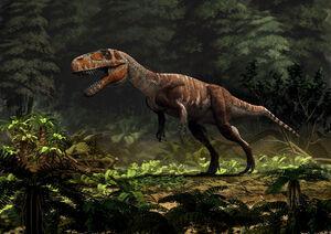 Torvosaurus gurneyi WEB.jpg