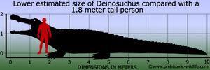 Deinosuchus-size.jpg