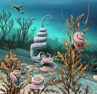 Cretaceous-heteromorph-ammonites-richard-bizley