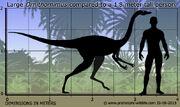 Ornithomimus-size.jpg