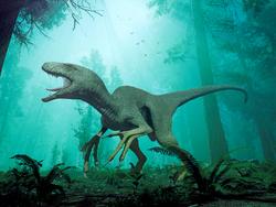Dakotaraptor 11 by herschel hoffmeyer-dbms9ae