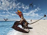 Диморфодон на пляже