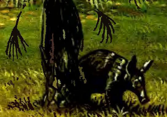 Ориктероп