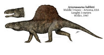 Аризонозавр4
