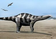 275px-Demandasaurus NT.jpg