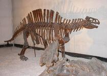Лотозавр7