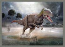 Carcharodontosaurus by ilyayungin
