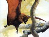 Гуамская летучая лисица