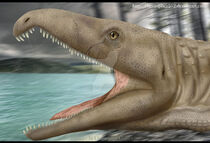 Proterosuchus by christopher252-d7jcxst