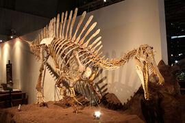 Спинозавр543.jpg