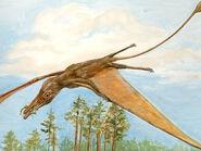 1Arcticodactylus1