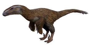 Dromaeosauroides.jpg