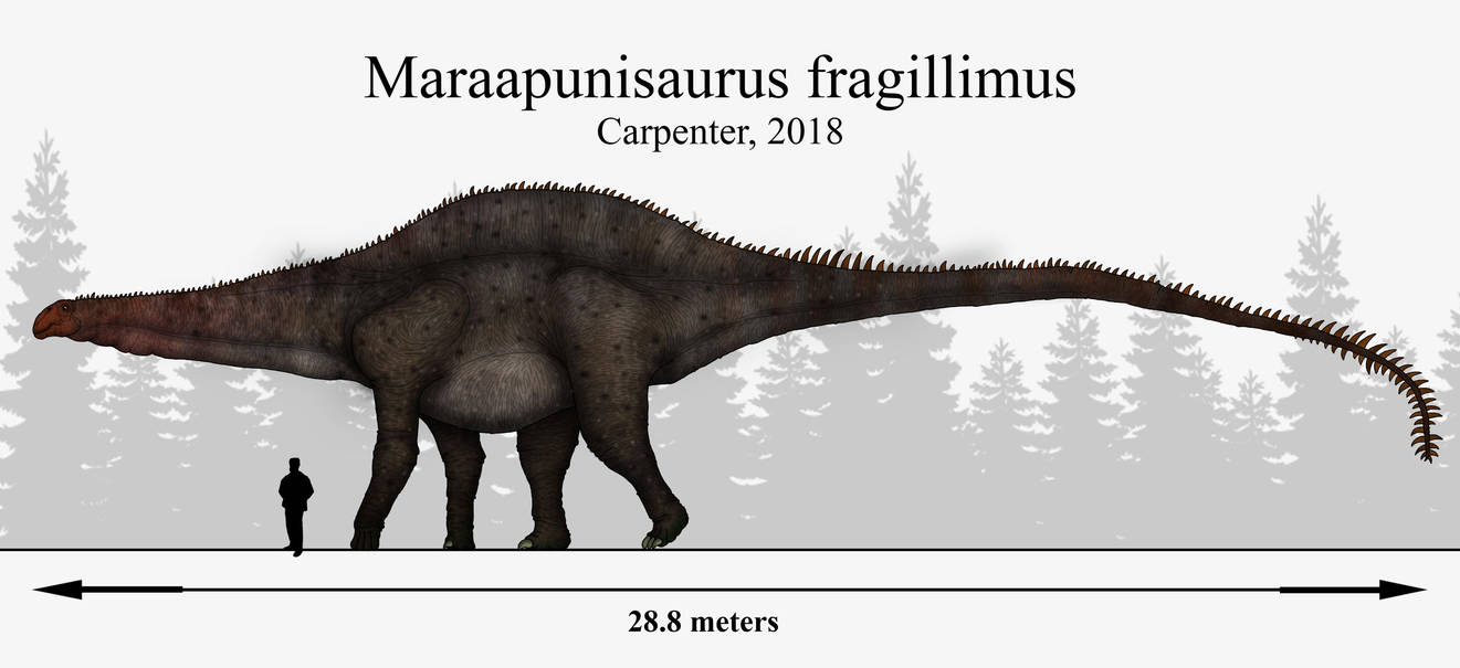 Мараапунизавр
