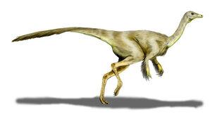 Struthiomimus BW (1).jpg