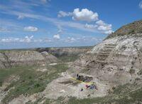 Wendiceratops pinhornensis holotype quarry