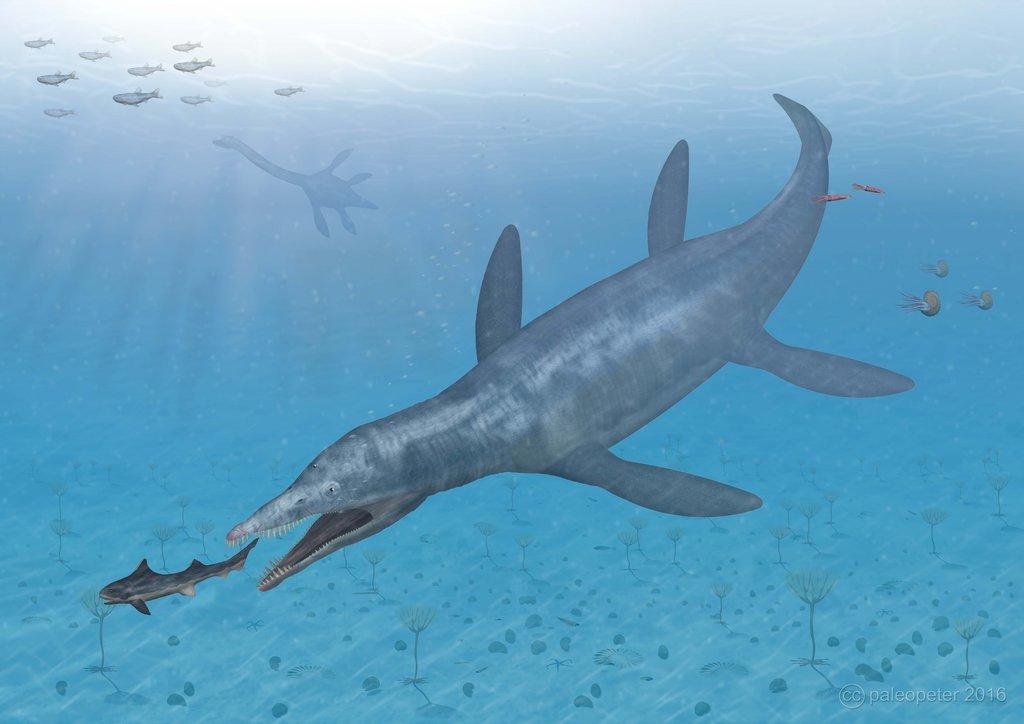 Гауффиозавр