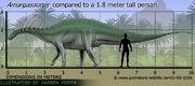 Amargasaurus-size.jpg