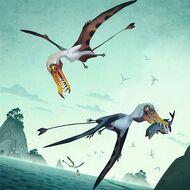 1Dorygnathus