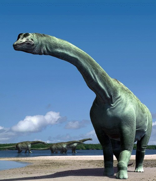 Атлазавр