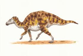 Гадрозавр1