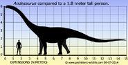 Andesaurus-size