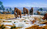 Image-Woolly-Mammoths.jpg