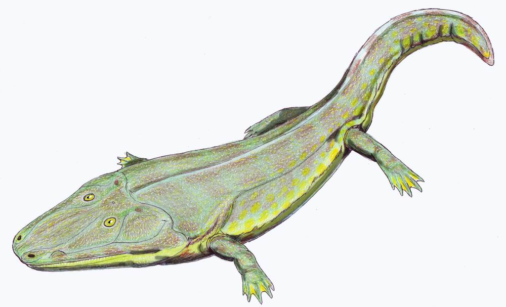 Циклотозавр