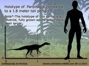 Panphagia-size.jpg