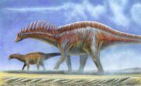 Amargasaurus cazaui by christoferson