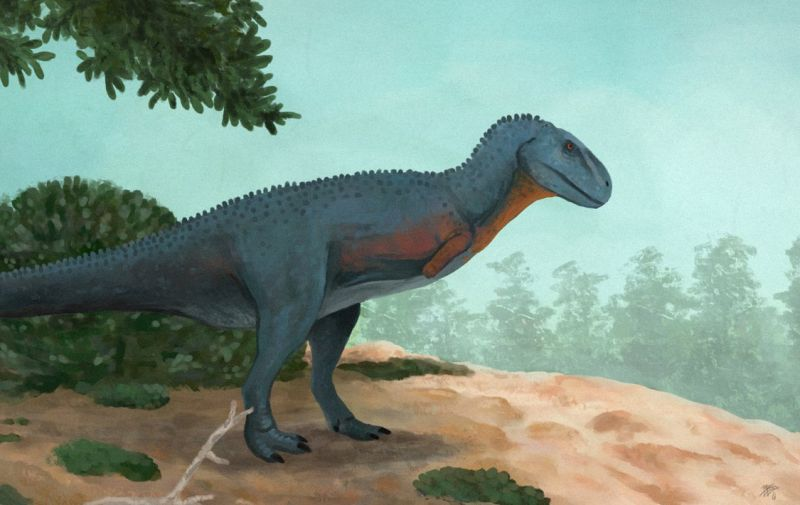Ауказавр