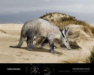 Leptorycteropus.jpg
