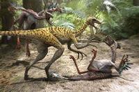 Screen raptors