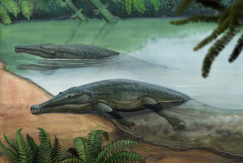Платиопозавр