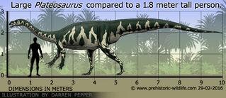 Plateosaurus-size.jpg